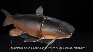 The Debrief: Behind the Artifact - Charlie the Fish