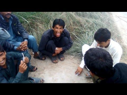charsi log Tash full funny galian  | Hungama pk