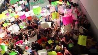Steve Stefani Dance Marathon: 50 Days till SSDM