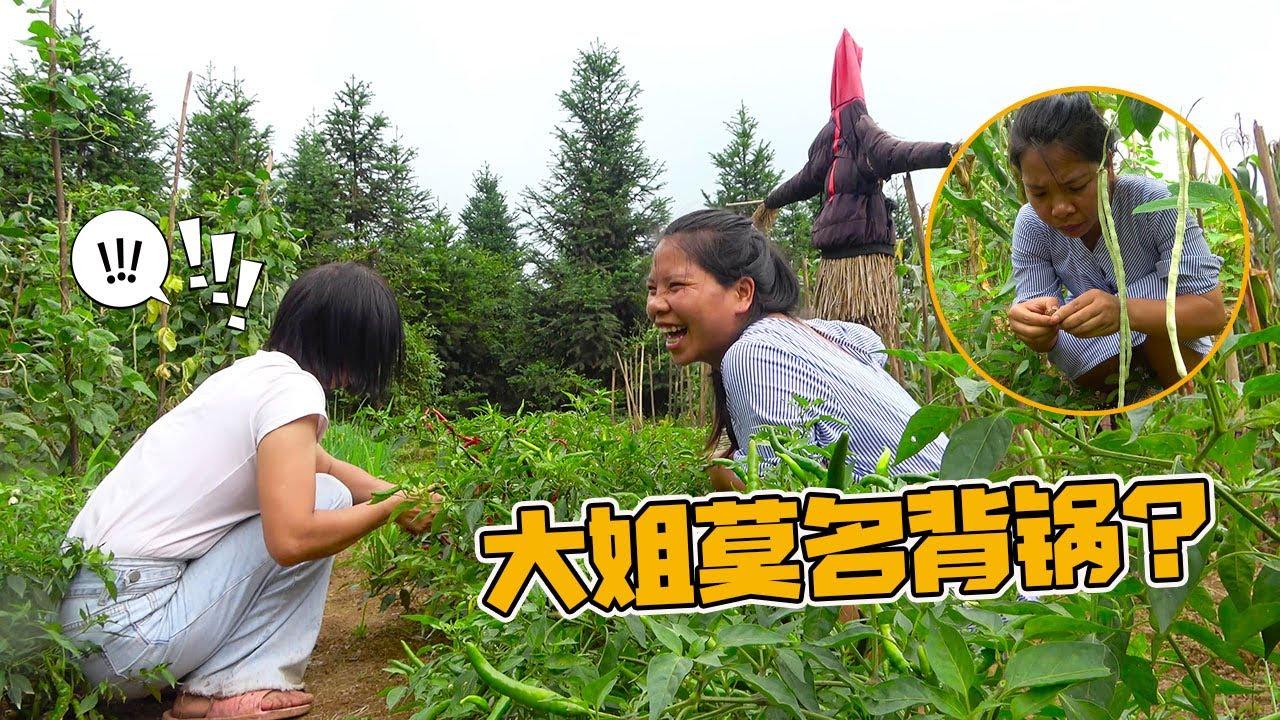 英子偷吃老妈花生被发现,结果却拉大姐背黑锅,这是啥情况?【农村小英子】