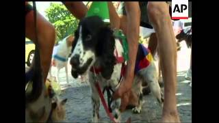 One of the more unusual street parades in Rio de Janeiro took place on Sunday, as owners brought the