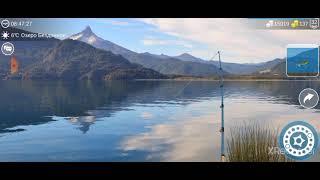 где поймать сома в my fishing world