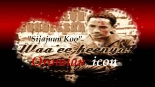 Haccalu hundesa new album2013