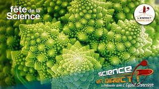LE POUVOIR DES PLANTES - Science En Direct 2020