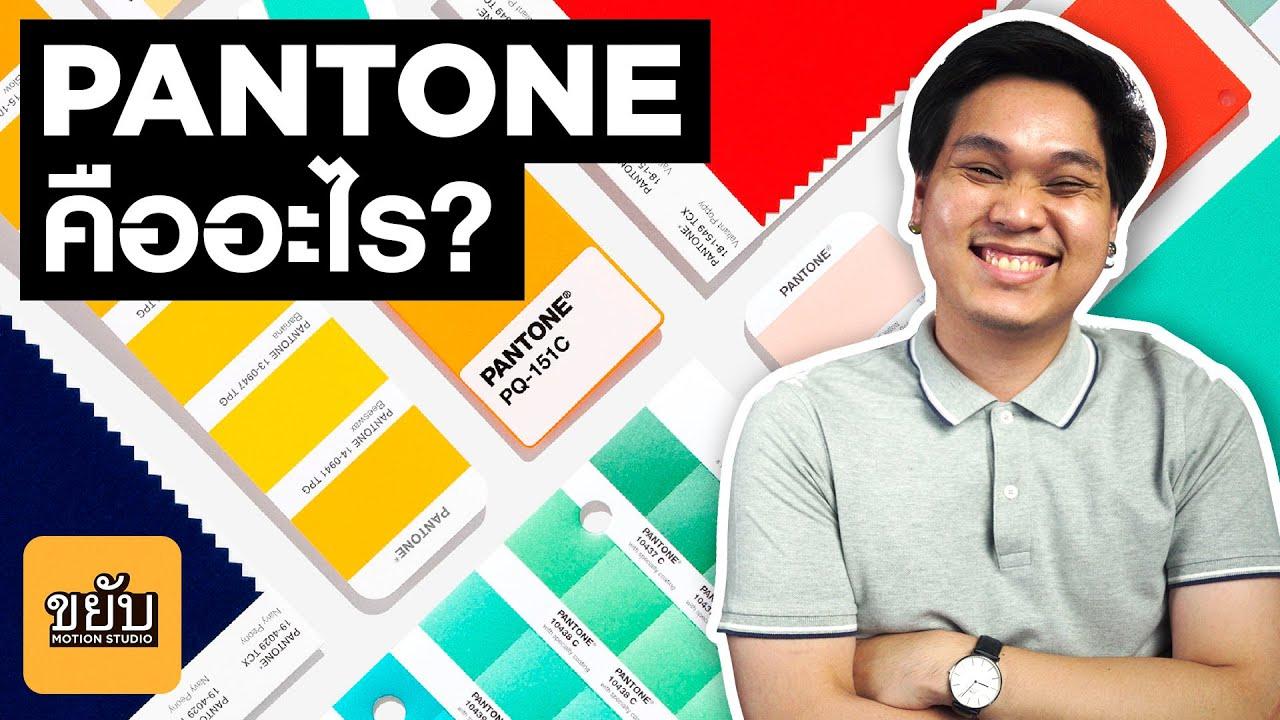 Pantone คืออะไร? และเกี่ยวอะไรกับ Color of the year ? #ขยับmotion #khayabmotion