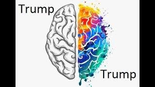 The Intellectual Dark Web Discusses Trump