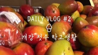 VLOG#2 🍦개강 첫주 학교생활🍜 샤브샤브, 다이소, 마트 장보기 | 싱가폴 유학생의 일상 브이로그