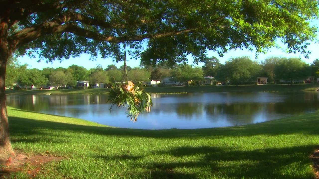 Active And Affordable 55 Communities In Central Florida