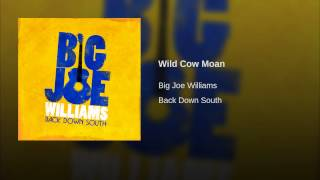 Wild Cow Moan