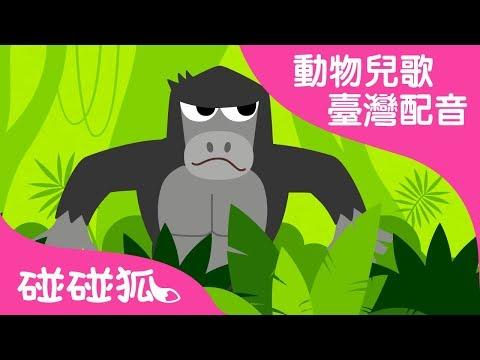 森林 嘭嘭 | 動物兒歌1 | 臺灣配音 | 碰碰狐PINKFONG