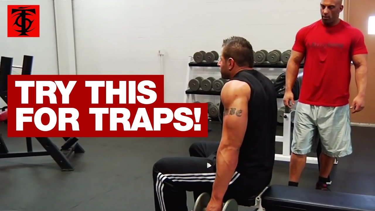 How To Perform the Seated Dumbbell Shrug Like a Pro (what