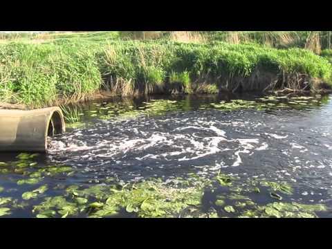 Конан Дойль обь река по чистоте ней