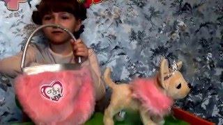 собака Чи Чи Лав Принцесса. Обзор видео.Распаковка игрушки