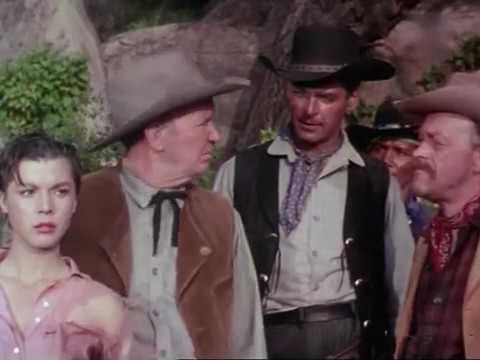 Four Guns to the Border Western Richard Carlson, Rory Calhoun, Colleen Miller, George Nader