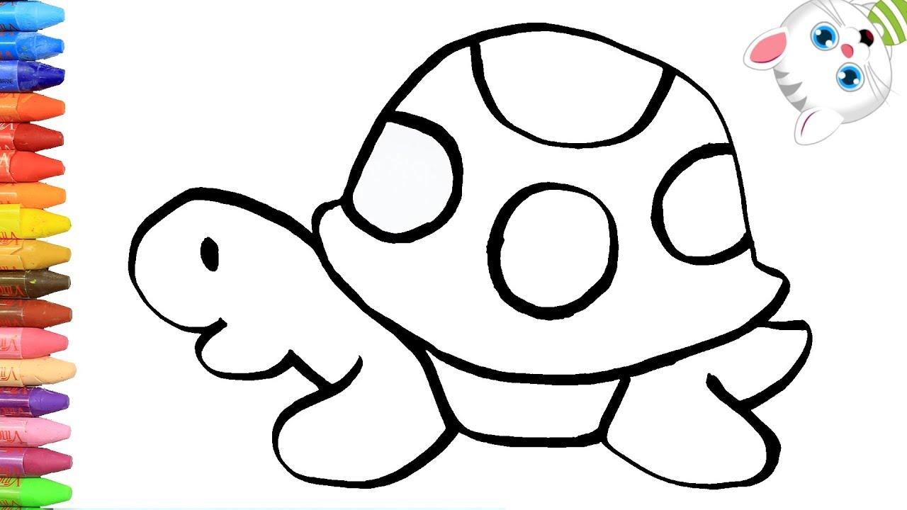 Cómo Dibujar Y Colorear Tortuga De Colores Dibujos Para Niños Con Mimi Aprender Colores