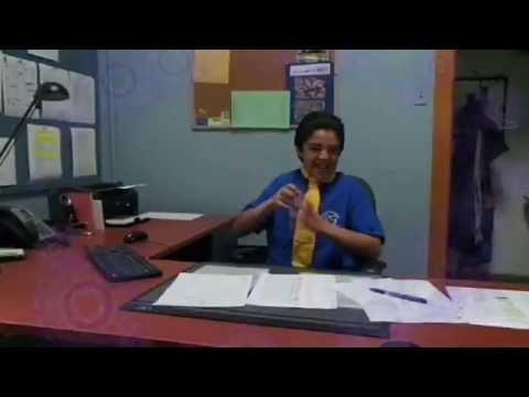 Perseverance Scolaire Ecole Bois Franc Aquarelle Csmb 2014 Youtube