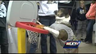Fairdale Bulldog Mascot Shows Off Dunking Skills