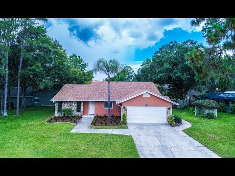 3441 Brian Road S, Palm Harbor Tarpon Woods Best Real Estate Agent Duncan Duo RE/MAX Home Video
