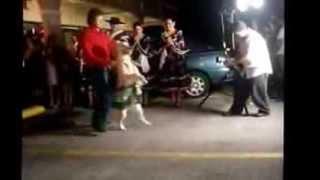Великолепный испанский танец собаки flv(пишите свои комментарии мне интересно знать что вы думаете о этом видео всем приятного просмотра., 2013-10-13T15:24:34.000Z)