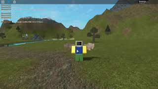 Problem I Had with the roblox verification system.