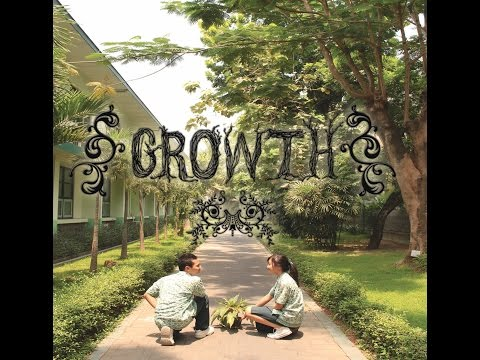 Growth   Short Eco Culture Movie