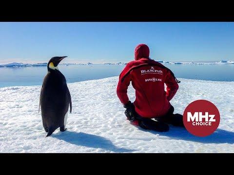First Look: Antarctica