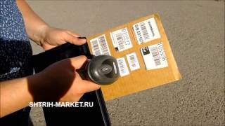 видео Сканер Proton IMS-3100