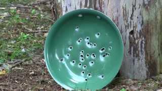 Orgreenic Frying Pan Review - Target Practice!