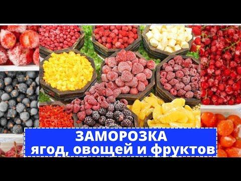 ��������Много фруктов мы набрали, овощей насобирали, можно зиму зимовать, и запасы поедать.