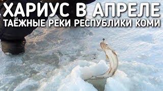 РЫБАЛКА / ХАРИУС В АПРЕЛЕ / ТАЕЖНЫЕ РЕКИ РЕСПУБЛИКИ КОМИ