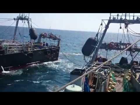 Kapal Trawl Jepang Dan Pelaut Indonesia