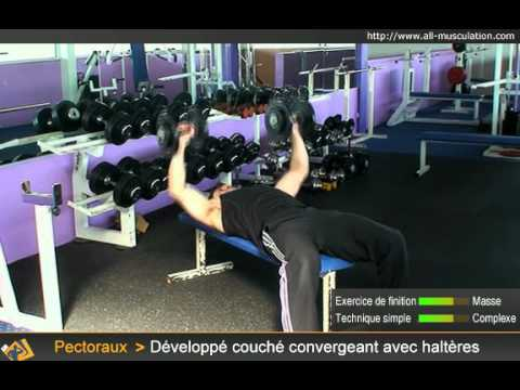 Exercice du d velopp couch halt res musculation des - Pectoraux developpe couche ...