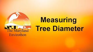 Measuring Tree Diameter