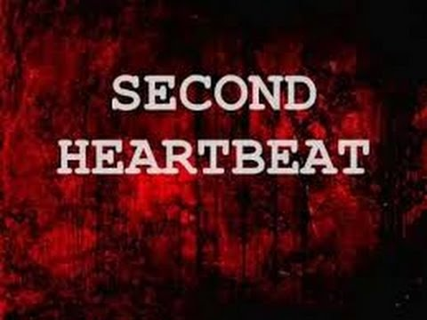 Avenged Sevenfold - Second Heartbeat Rhythm Zacky Vengeance