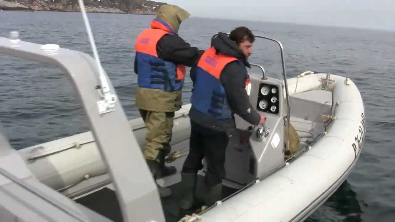 Лодка РИБ Stormline Ocean Drive Luxe 500 и mikatsu 60 лс 4хтаткный .