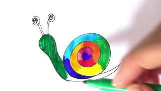 Kako se crta puž - bojanka za decu | Как нарисовать улитку - детская раскраска
