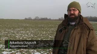 Żubr - rolnik, trudny związek