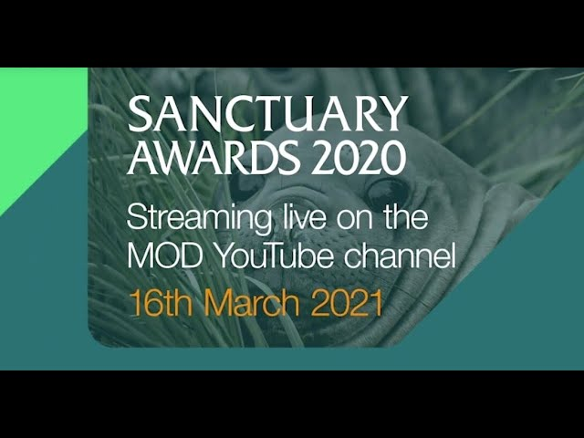Ministry of Defence's - Sanctuary Awards 2020