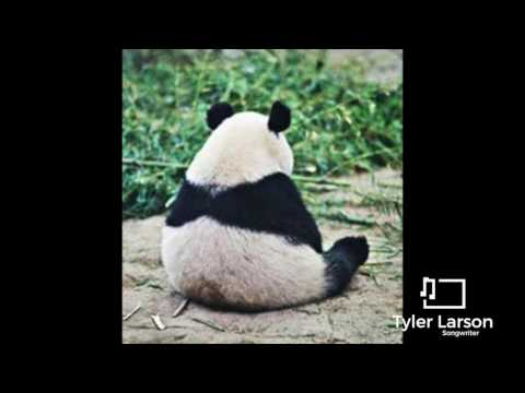 Sad Pandas (Sitting Alone) - A Short Film