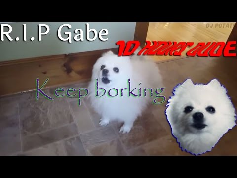 Bork till you're dead [10 Hours]