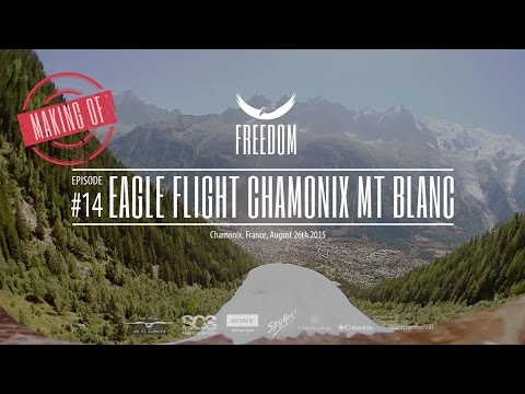 Freedom Conservation Eagles fly from the Brévent, Chamonix, with superb Mt Blanc views