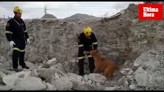 Grupo canino de rescate de los Bomberos de Mallorca
