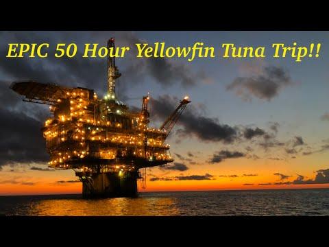 GIANT YELLOWFIN TUNA - Texas Oil Rig Fishing Trip!