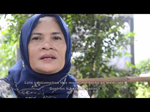 Medicine From Biodiversity by Ecosrikandi