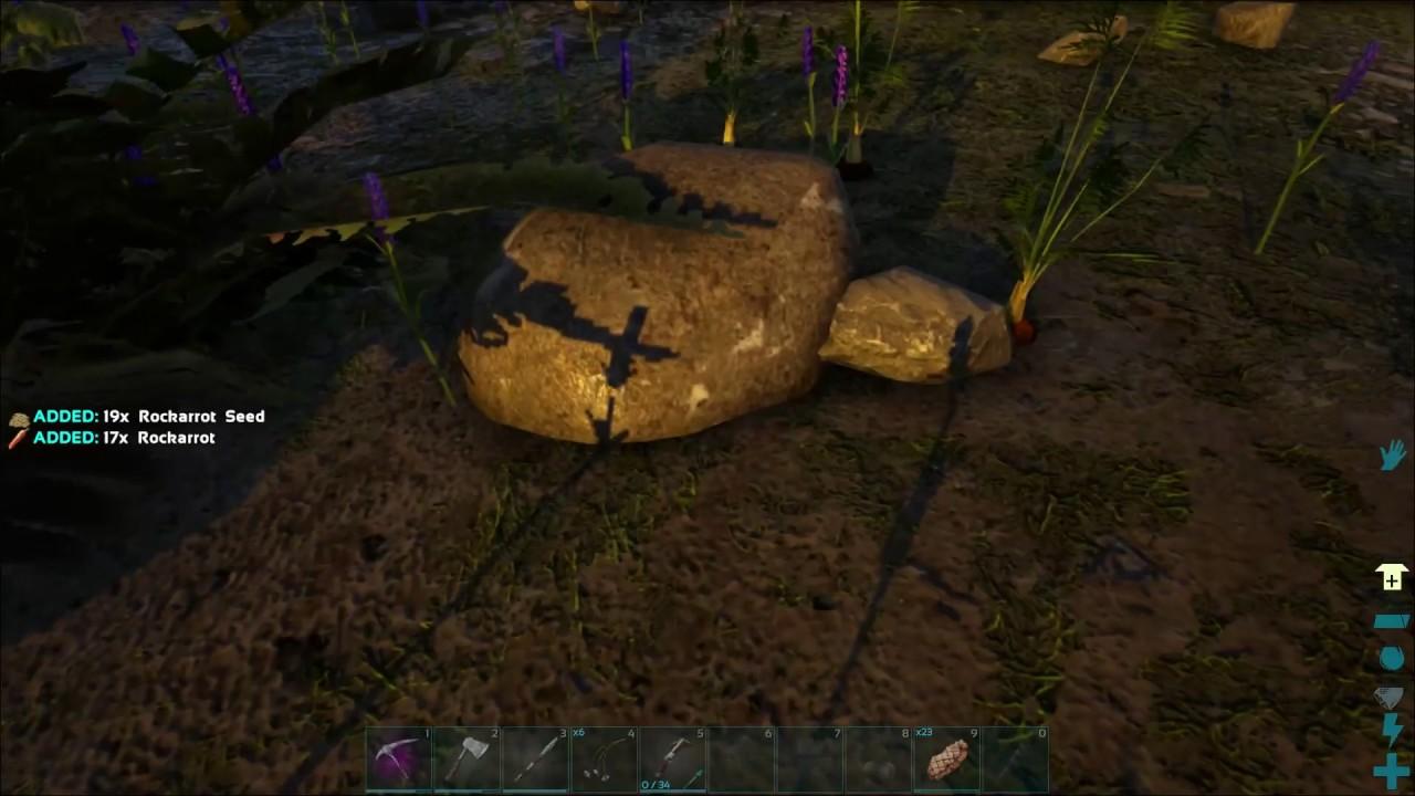 Rockarrot Growing In The Wild Ark Ragnarok