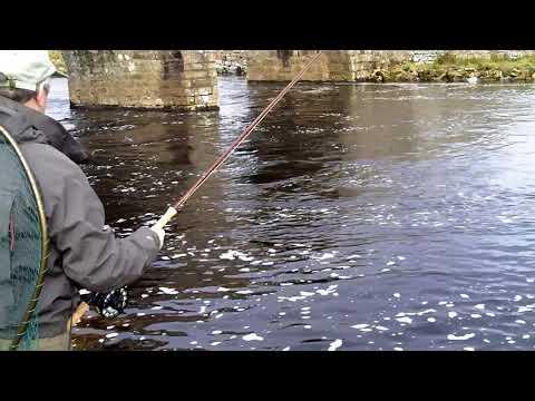 Spring fishing on the River Thurso 2