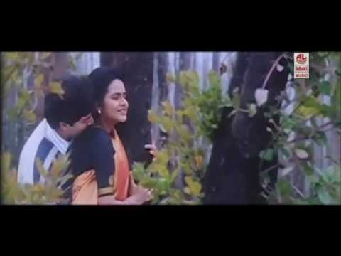 Telugu Movie Video Songs | Roja Movie Songs | Paravum Vanagaa