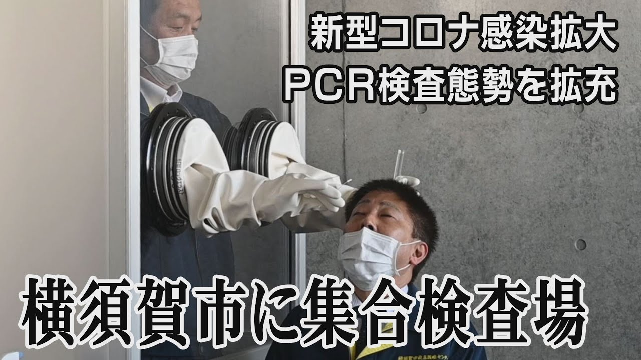 市 コロナ 感染 者 横須賀