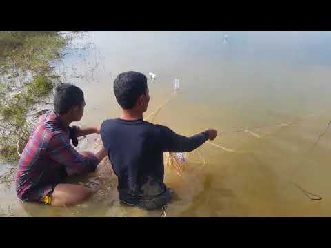 Survival Skills Primitive Best net fishing videos Catch a lot of fish in Lake  | Amazing fishing vi