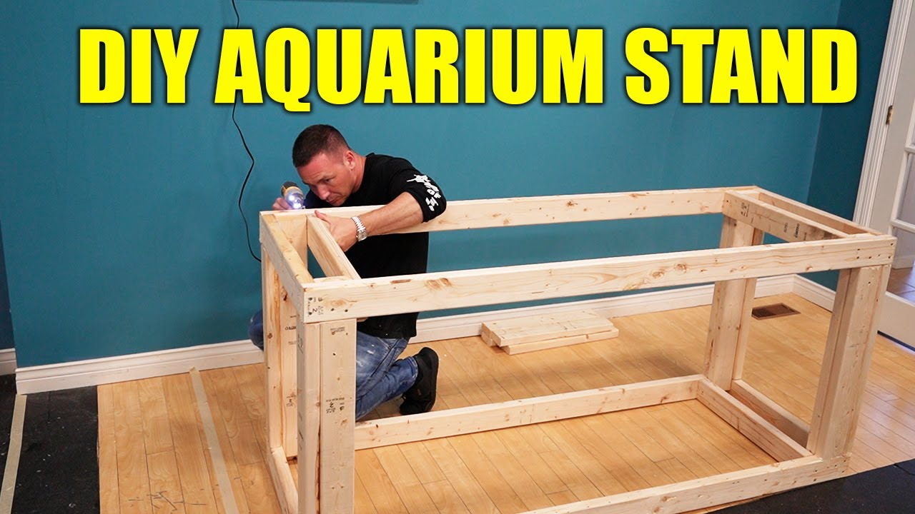 How to build an aquarium stand like a pro - The king of DIY